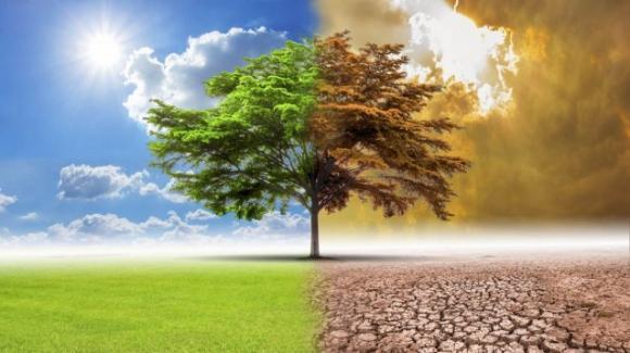 Webinar – Il cambiamento climatico:  conseguenze idrologiche e idrauliche' (Sessione II)